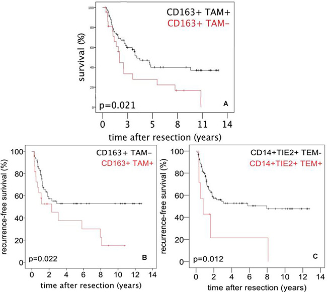 Survival after surgery for PDAC referred to tumor infiltrating monocytes/macrophages.