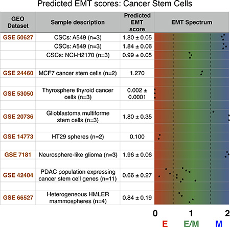 The predicted EMT score for several stem cancer subtypes shows a heterogeneous distribution across the EMT axis.