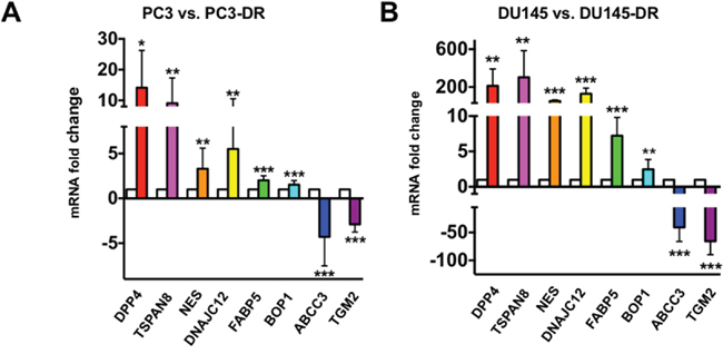 In-house qPCR validation of the expression of selected top-ranked genes from RNA-seq results in DTX-sensitive and DTX–resistant mCRPC cells.