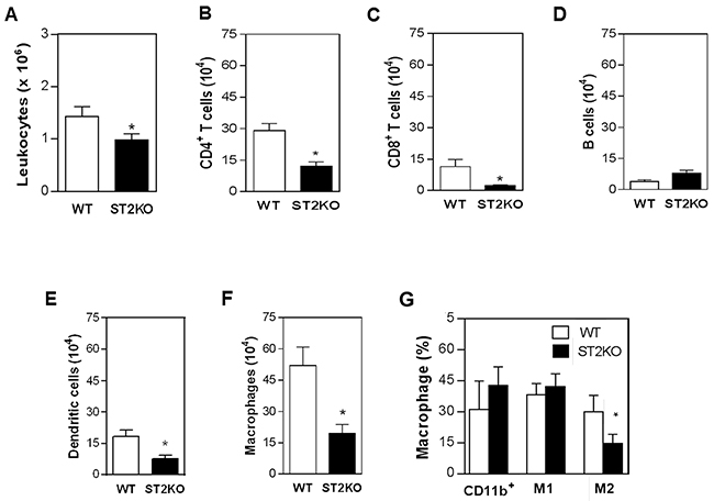 ST2 deficiency is associated with reduced immune cell infiltration in tumors.