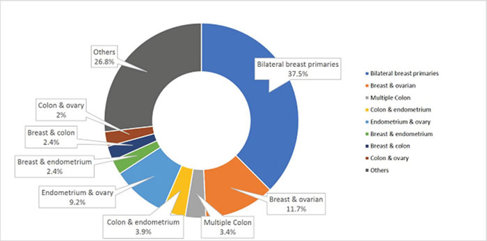 Distribution of multiple primary cancers in patients with 2 primary cancers (n = 205).