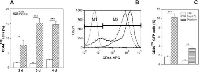 Enrichment in CD44-negative cell subpopulation resulting from Poly(I:C) stimulation.