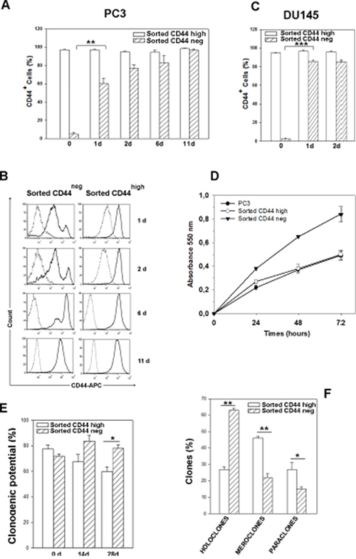 Time course of CD44 expression in CD44neg- and CD44high-sorted cells, proliferation rate and clonogenic potential.