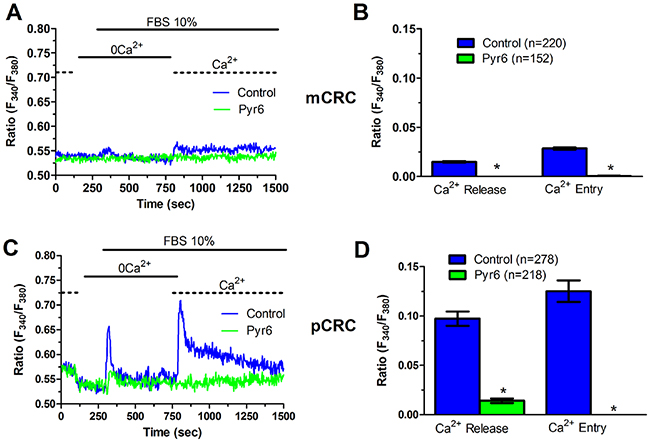Pyr6 inhibits InsP3-dependent Ca2+ release in patients-derived colorectal cancer cells.