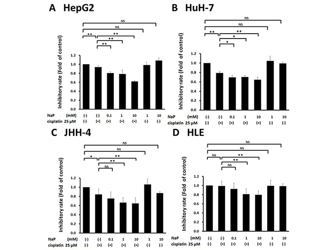 Effects of NaP combined with cisplatin on proliferation rate of HCC cell lines.