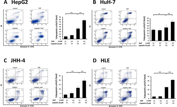 Effects of NaP combined with cisplatin on apoptotic rate of HCC cell lines.