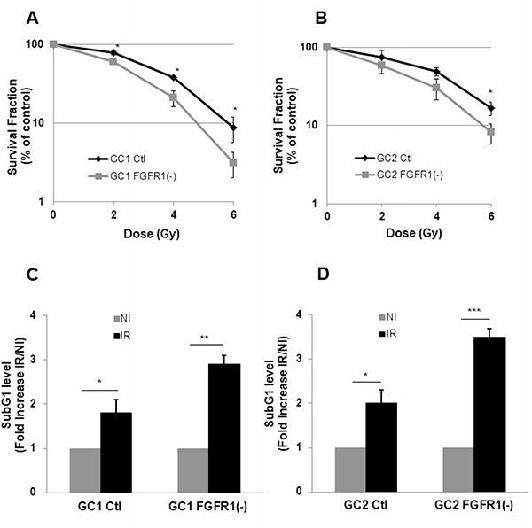 Down-regulation of FGFR1 gene expression radio-sensitizes and increases radio-induced cell death in tumor cells derived from GBM biopsy specimen.