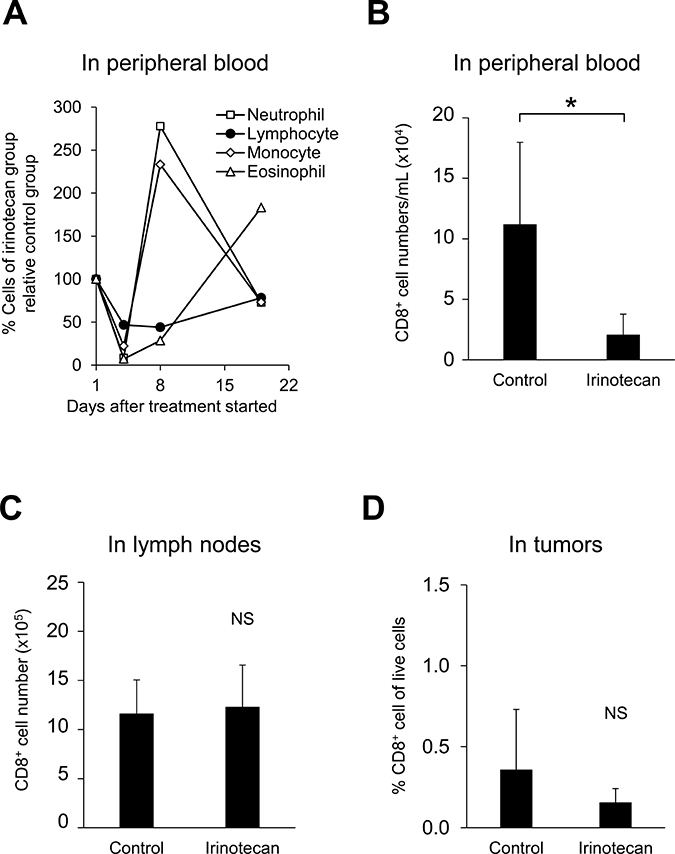 Irinotecan induced peripheral hematotoxicity but did not decrease the number of CD8+ T cells in tumors or lymph nodes.