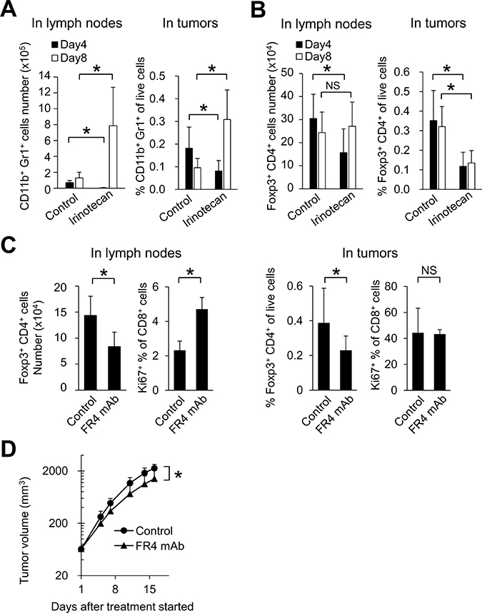 In lymph nodes, irinotecan increased CD8+ T cell proliferation through Tregs depletion.