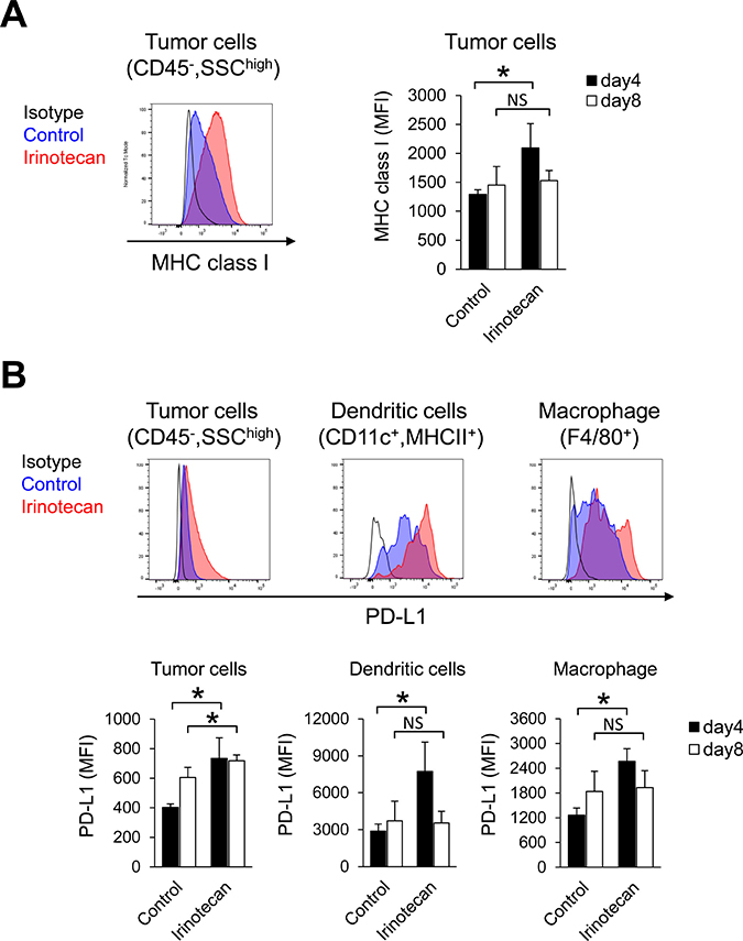 In tumors, irinotecan increased MHC class I expression but also PD-L1 expression at the same time.