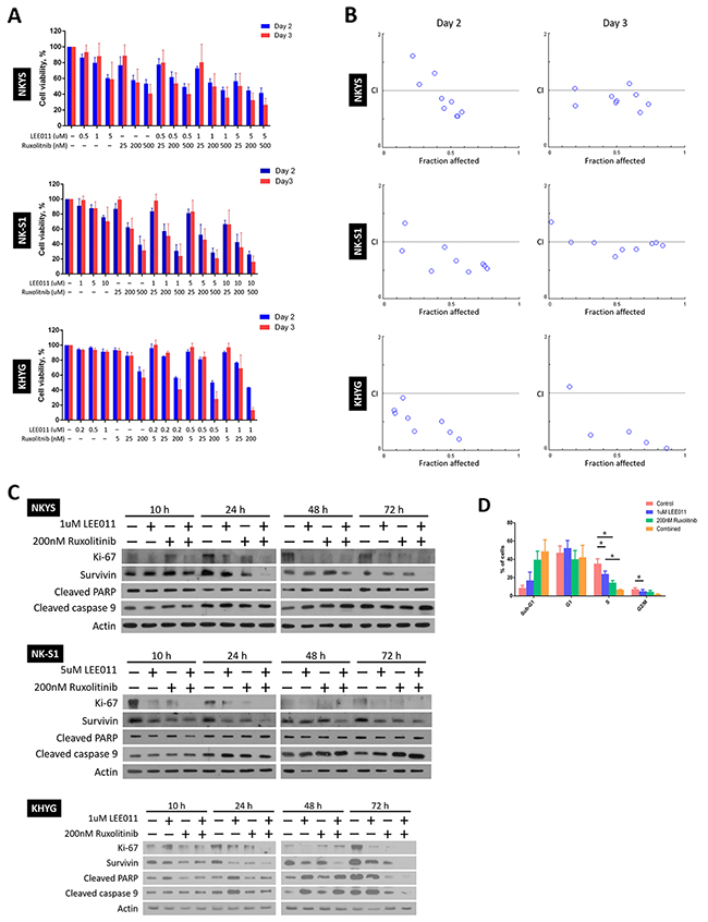 LEE011 and ruxolitinib displayed synergistic relationship on achieving growth inhibition in NKTCL cell lines.