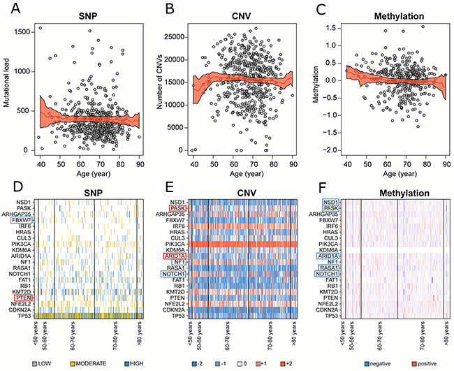 Correlation between genomic alterations and patient age in global cohort.