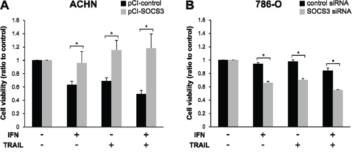 Reduced cell viability in response to TRAIL depends on SOCS3 expression.