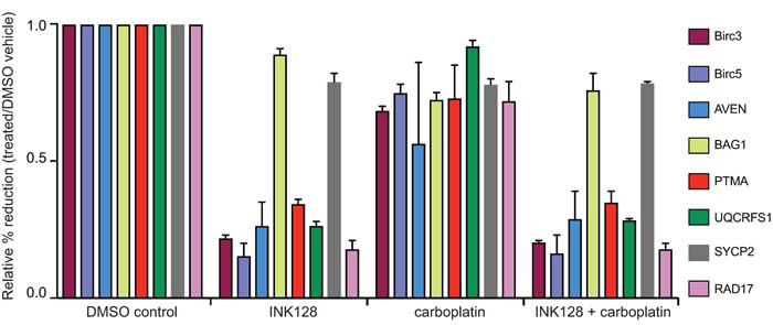 qRT-PCR analysis of select mRNAs in mTORC1/2 inhibited cells with and without carboplatin treatment.