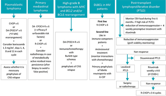 Treatment for special DLBCL subtypes.