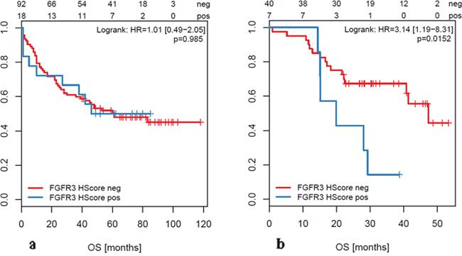 Overall Survival (OS) of patients with FGFR3 overexpression (based on H-score ≥200) measured in primary tumors (a) and in metastases (b).