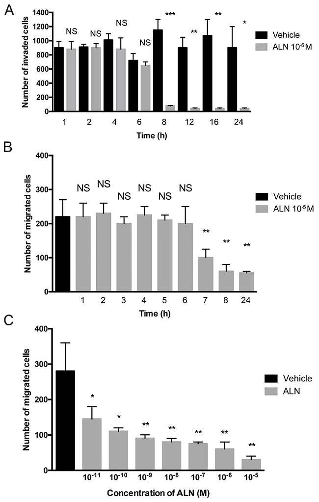 ALN decreases PC-3 cell invasion and migration in a Boyden chamber assay.