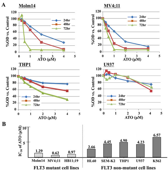 ATO has relatively selective anti-proliferative effects against FLT3/ITD + leukemia cells.