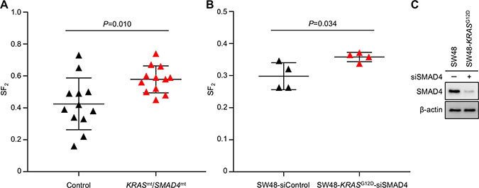 Higher SF2 is associated with simultaneous mutations in KRAS and SMAD4.