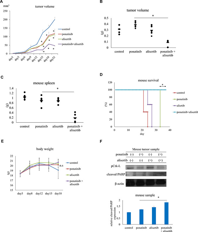 Effects of ponatinib and alisertib on Ba/F3 T315I cell proliferation in a mouse model.