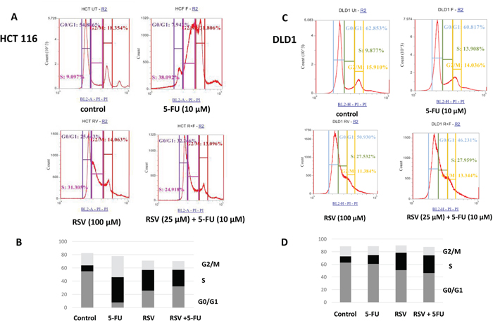 FACS analysis of cell cycle of HCT116 and DLD1 treated with 5-FU (10 μM) and resveratrol (25 μM).