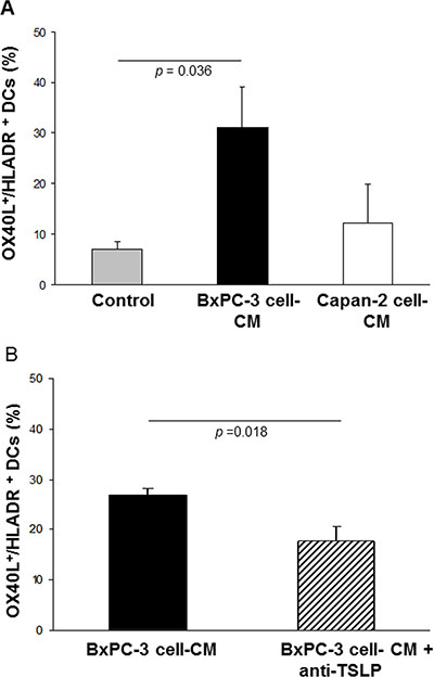 Effects of BxPC-3 and Capan-2 cell-CM on OX40L expression in ex vivo-generated normal DCs.