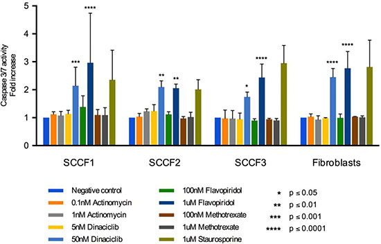 Apoptosis assay for SCCF1, SCCF2, SCCF3, and feline fibroblasts after treatment with actinomycin D, dinaciclib, flavopiridol, and methotrexate for 24 hours.