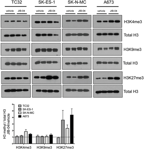 Effects of JIB-04 on global histone methylation in Ewing Sarcoma cells.