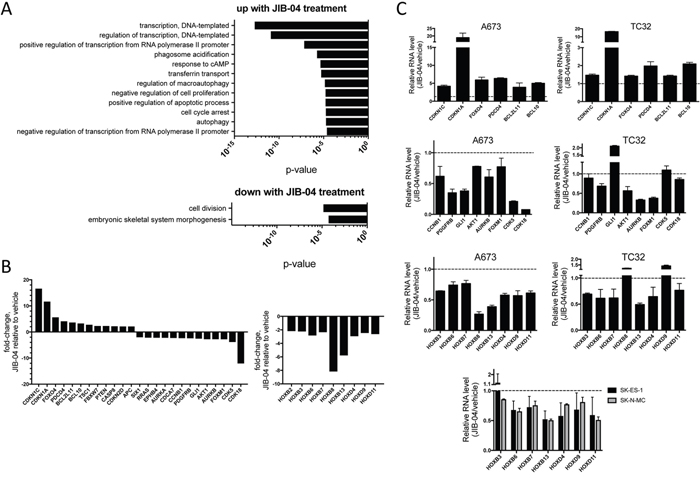 Effects of JIB-04 treatment on Ewing Sarcoma transcriptome.