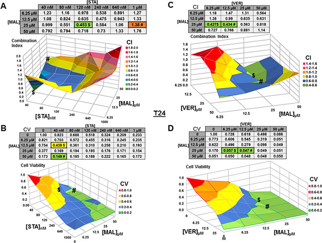 Combinations of HSP70 and HSP90 inhibitors synergistically reduce T24 cell viability.