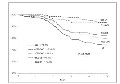 Cumulative survival (y axis) and overall survival (x axis) evaluated according to Kaplan-Meier statistical analysis and disease status in T3 low/middle rectal cancer patients treated with