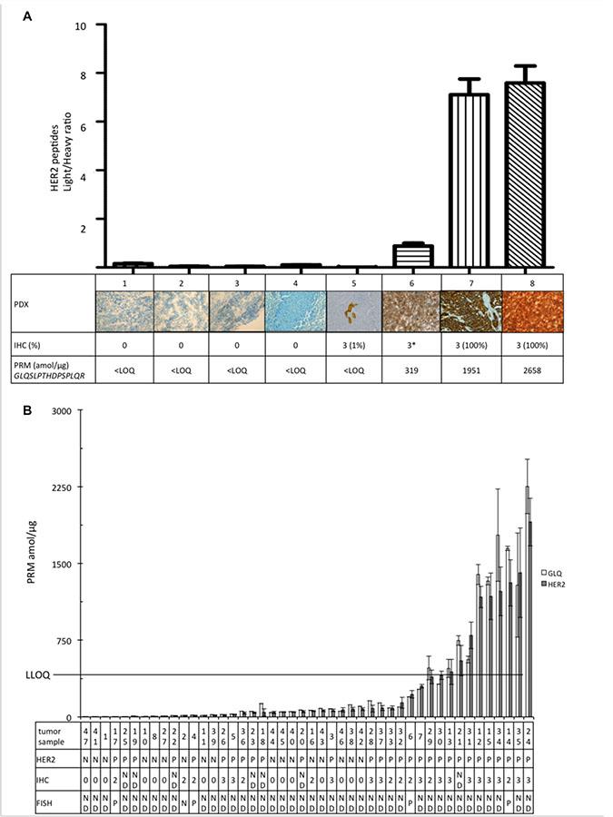 Quantification of the pooled HER2 peptides (GIWIPDGENVK; SGGGDLTLGLEPSEEEAPR; GTPTAENPEYLGLDVPV, GLQSLPTHDPSPLQR).