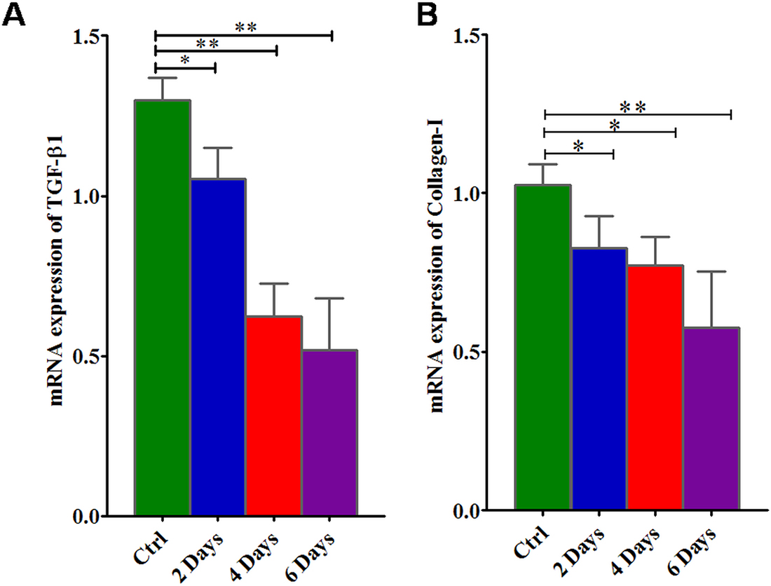 mRNA gene expression of TGFβ-1 and collagen-I in KATO-III cell line after treatment with suramin.