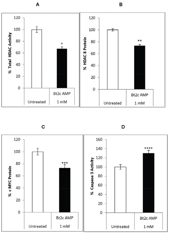 Bt2cAMP effects on gene expression, HDAC activity, and caspase 3 activity.
