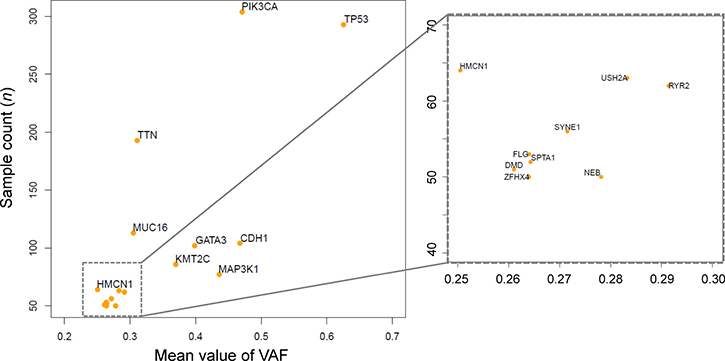 Frequently mutated genes and mean variant allele frequencies (VAFs).