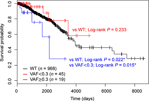 Kaplan–Meier analysis of overall survival according to HMCN1 variant allele frequencies (VAFs).