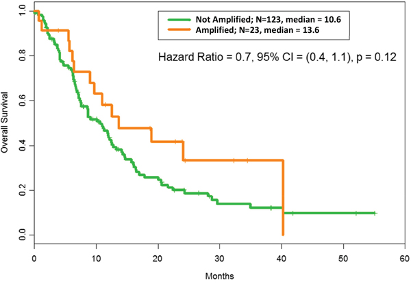 Overall survival according to MDM2 amplification status: After adjusting for RMH score, OS with MDM2 amplification = 13.6 months vs OS without MDM2 amplification= 10.6 months, hazard ratio = 0.6, confidence interval (CI) = (0.4, 1.1); p = 0.12. The median refers to months of survival.