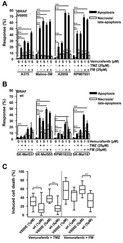Apoptosis and necrosis/late-apoptosis induced by combination treatment with TMZ and vemurafenib or FM and vemurafenib.