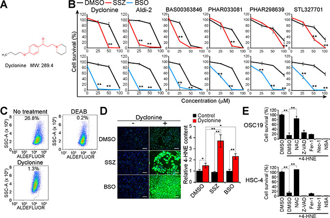 Dyclonine inhibits ALDH activity and induces 4-HNE accumulation in GSH-depleted cancer cells.