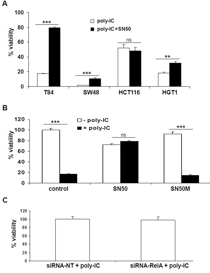 Effect of SN50 and siRNA RelA on the antiproliferative/cytoreductive effect of Poly-IC.
