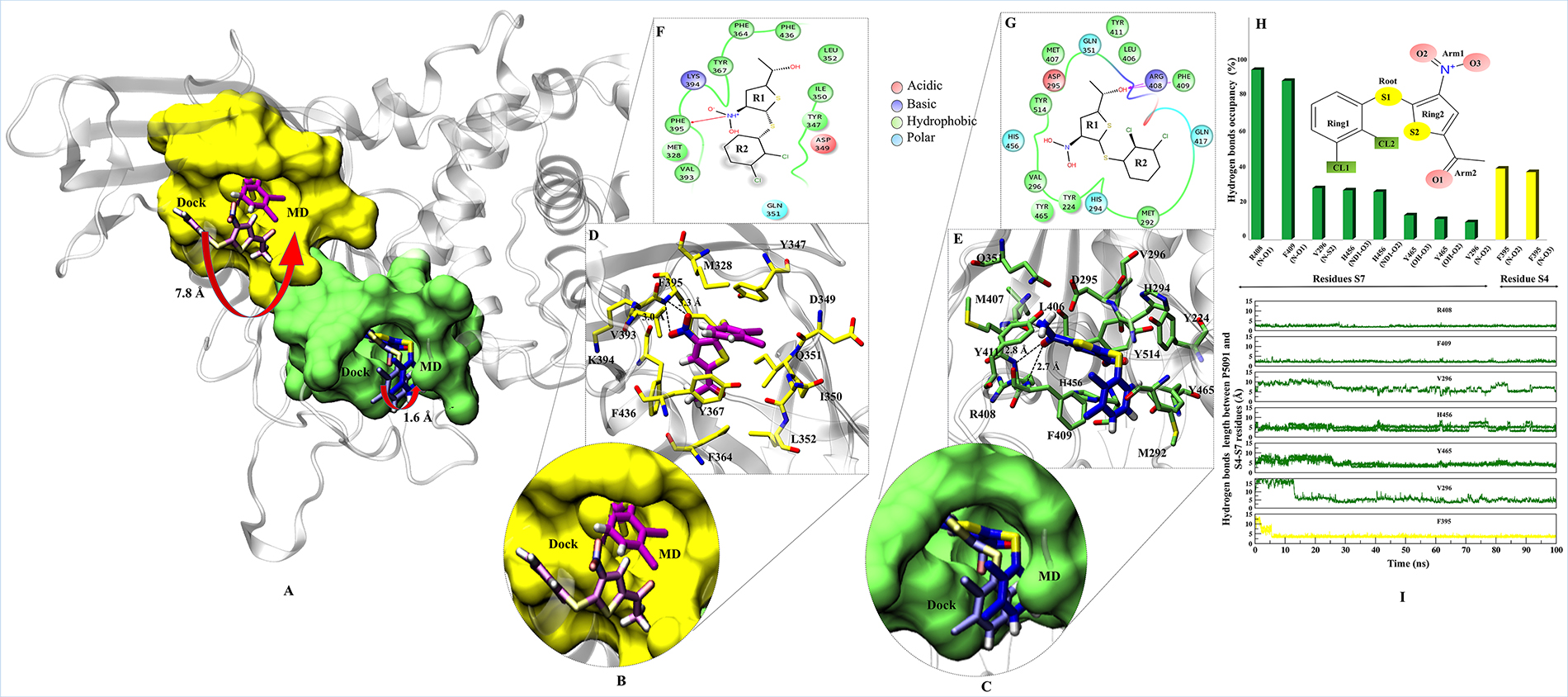 Binding modes and interaction map of P5091 at two most potential sites.