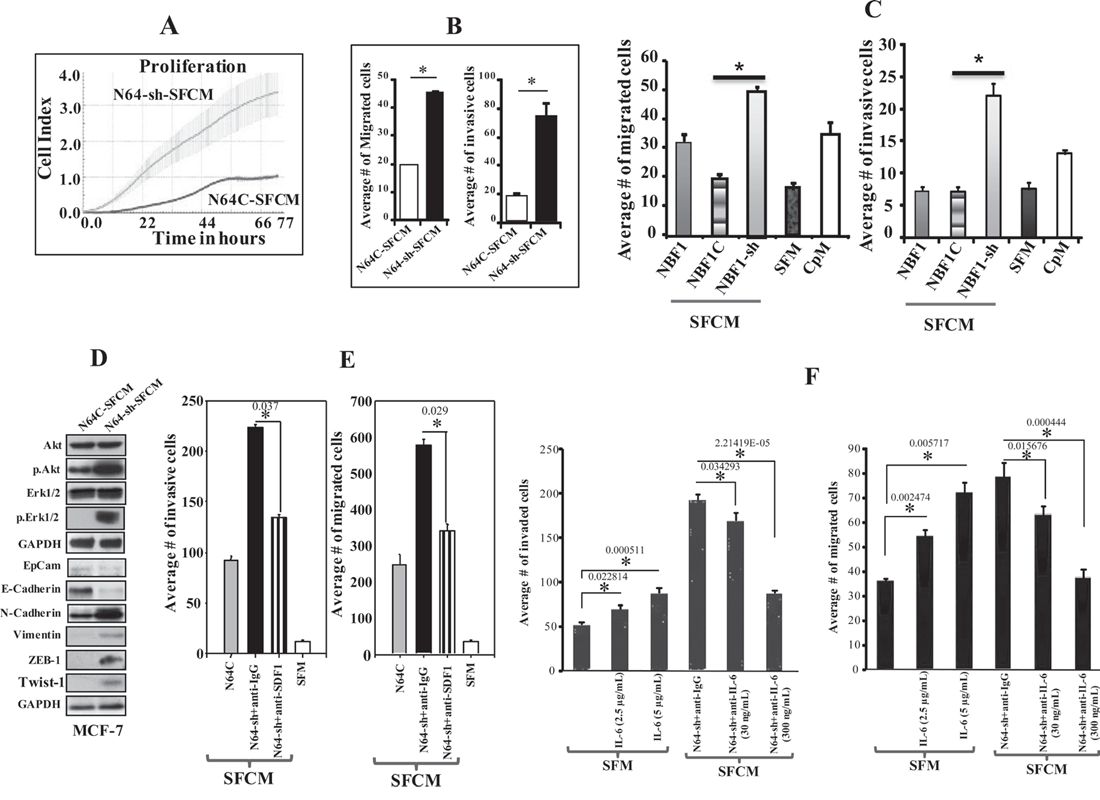 ATR down-regulation enhances the paracrine pro-carcinogenic effects of breast stromal fibroblasts in an SDF-1/IL-6-dependent manner.