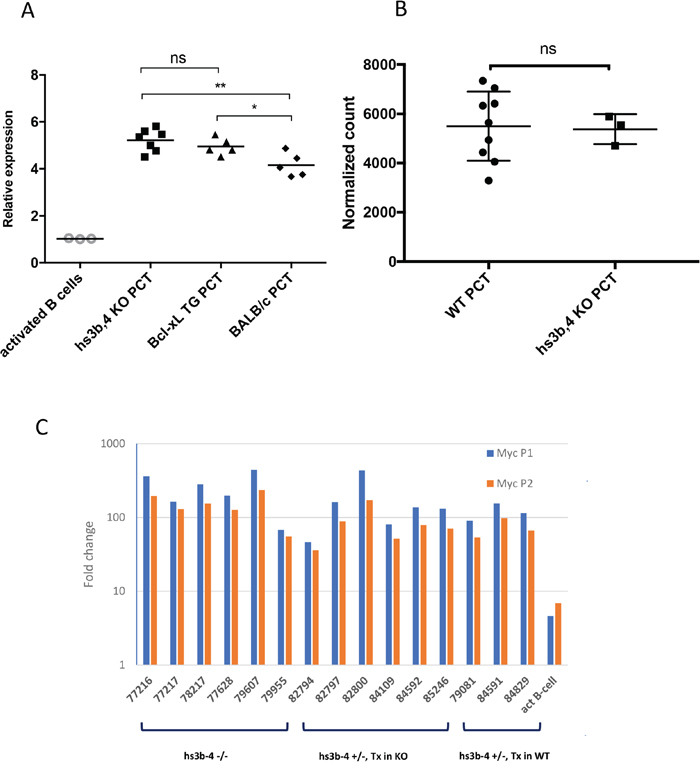 hs3-4b deficiency does not affect Myc expression in PCTs.
