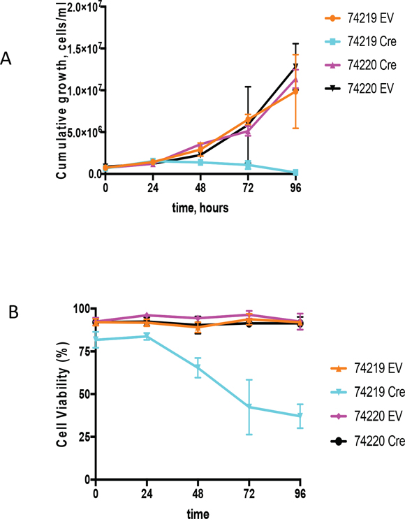 Growth analyses of PCT cells in vitro upon Cre-mediated deletion of the Igh3'RR.