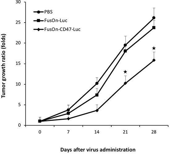 Therapeutic evaluation of virotherapy against CT26 tumor after systemic delivery of oncolytic viruses.