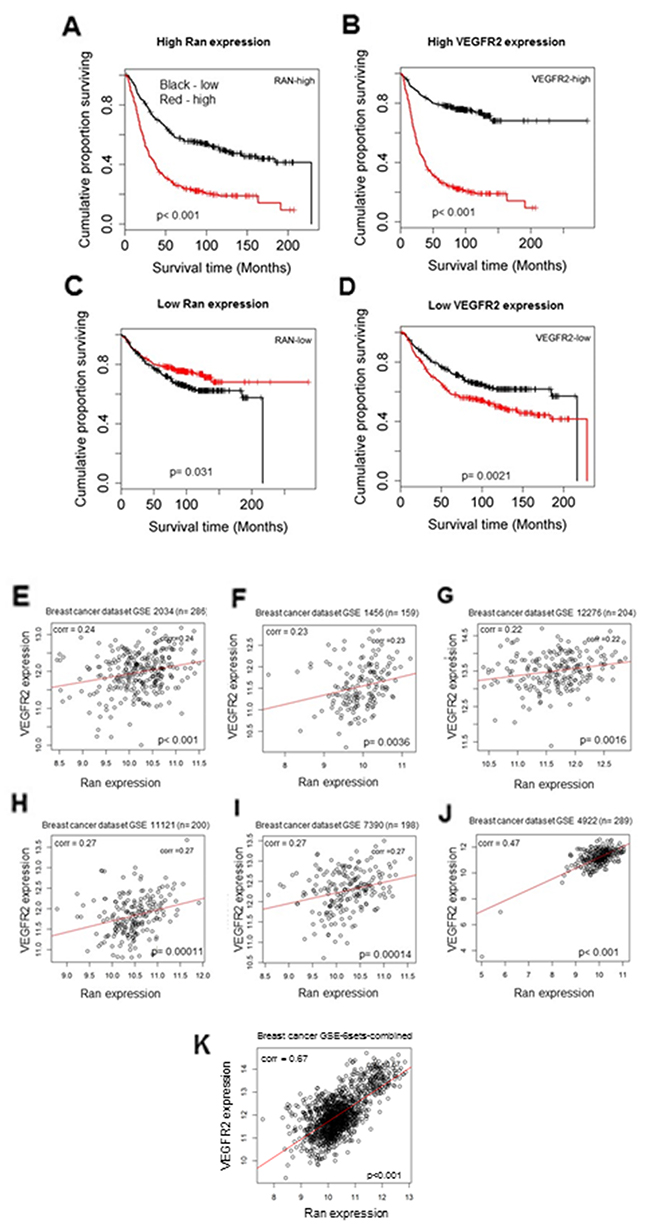 High level of Ran and VEGFR2 is correlated with shorter survival time of breast cancer patients.