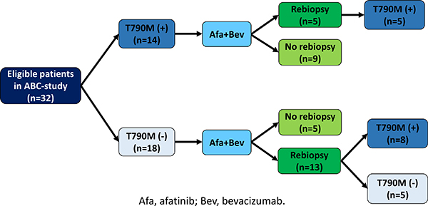 T790M status before and after afatinib plus bevacizumab.