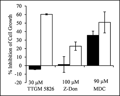 TTGM 5826 selectively inhibits the proliferation of onco-Dbl expressing MEFs.