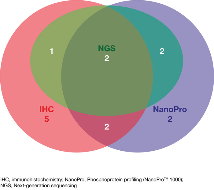 Venn diagram indicating the number of detected targets by each of the different approaches (IHC, NGS and NanoPro) and upon which therapeutic decisions were based for the subgroup of patients treated based on molecular profiling (N=14).