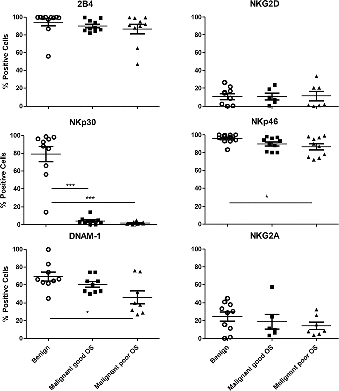 Expression of activating receptors on CD45+CD3-CD56+ NK cells.